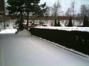 Februar 2010 001