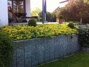 Hausgartenbepflanzung (1)